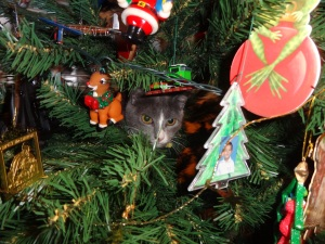 That cute little grey and white thing in the middle of the tree is no ornament -- it is a kitty tree-dehydrator.  See the infomercial following the topsy-turvy segment, to get yours.