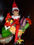 Our elf on the shelf wishing the rooster is a reindeer, while I wish he'd go back to the North Pole.
